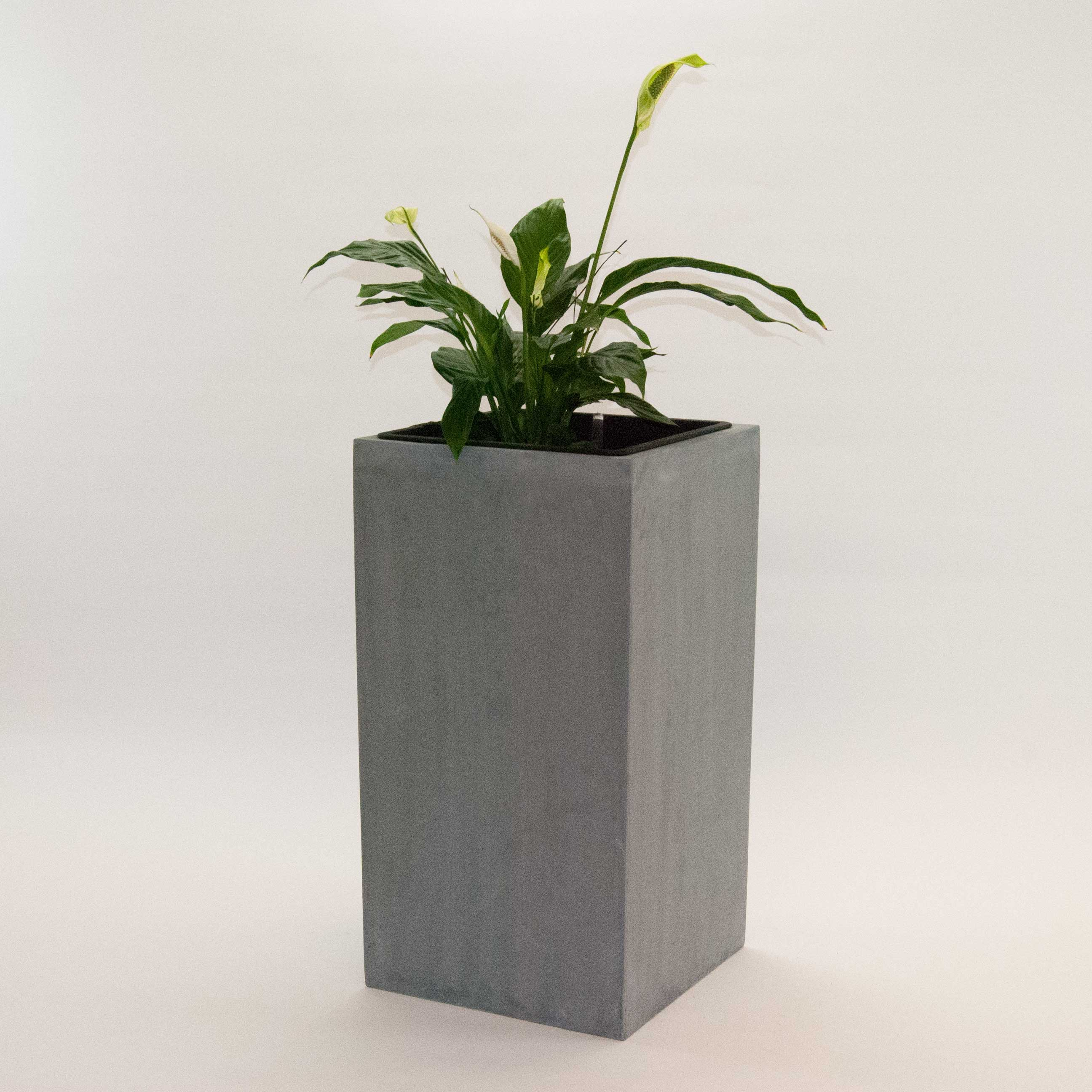 pflanzk bel fiberglas s ule 38x38x70cm grau. Black Bedroom Furniture Sets. Home Design Ideas